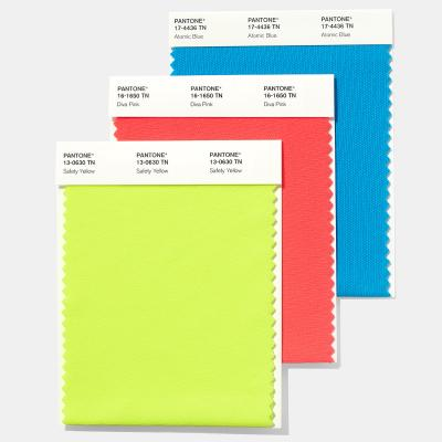 Thẻ màu Pantone Nylon Brights Swatch Card ( TN)